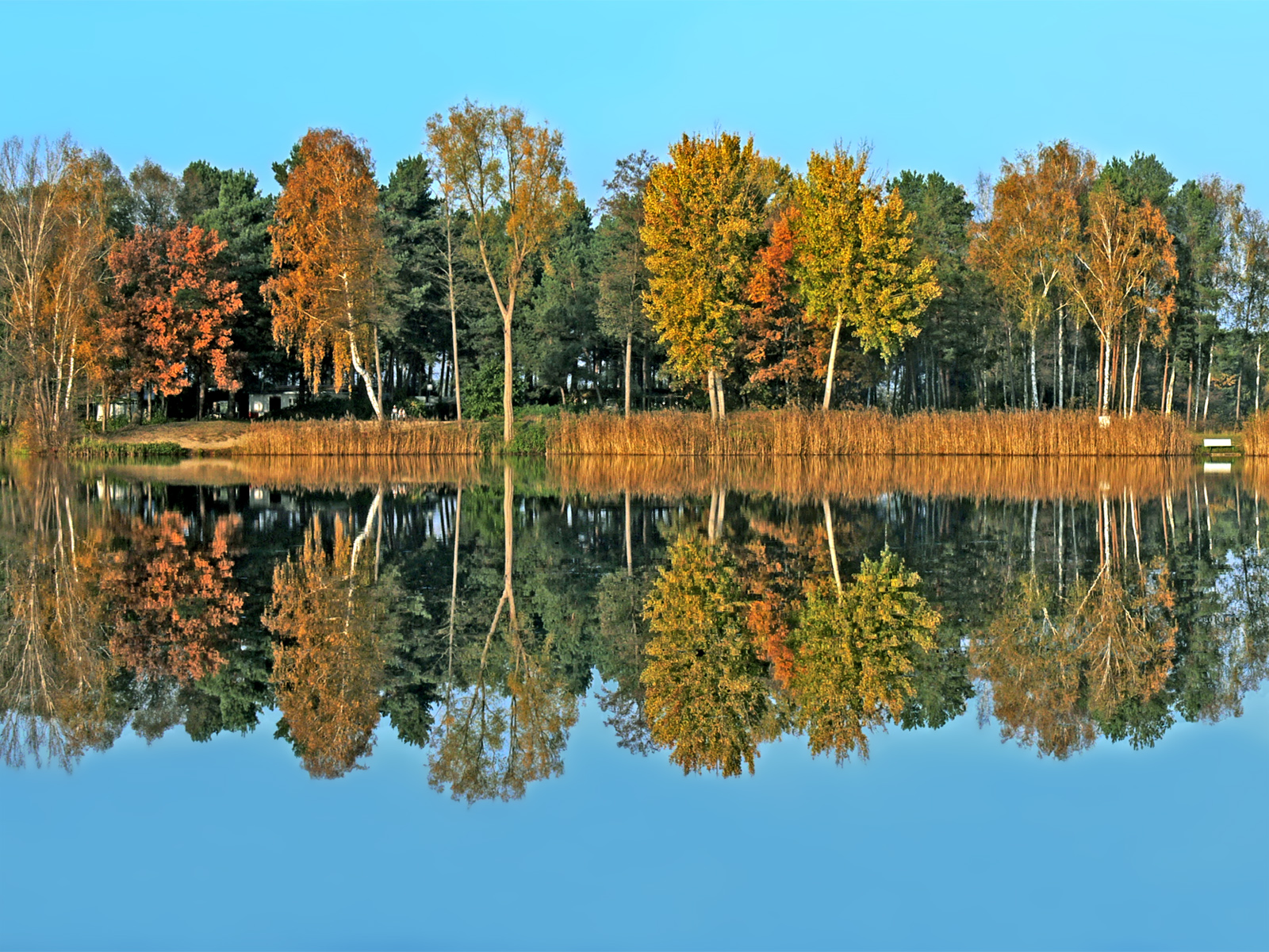 Herbstbemalung am See