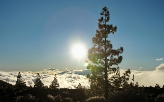 Teneriffa Teide Nationalpark #7